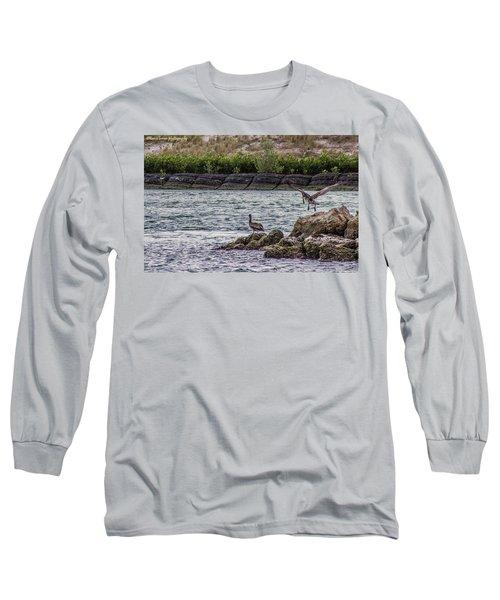 Pelicans  Long Sleeve T-Shirt by Nance Larson
