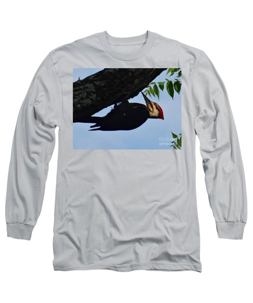 Pileated  Woodpecker Long Sleeve T-Shirt