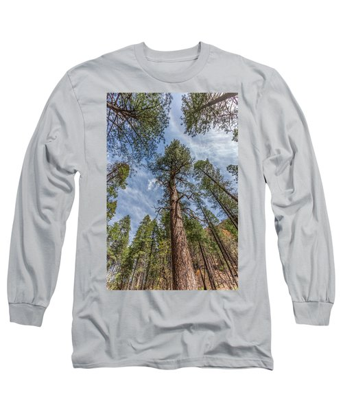 Pine Cathedral On The West Fork Long Sleeve T-Shirt