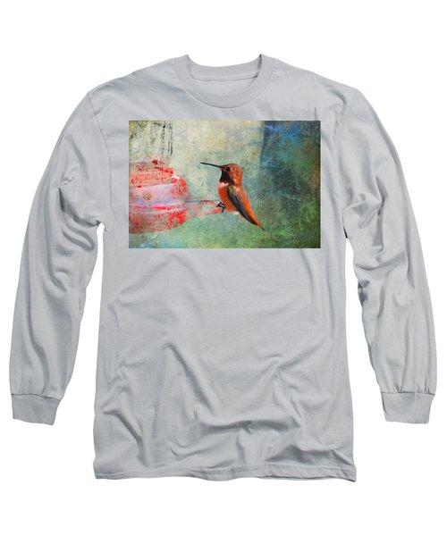 Plate 048 - Hummingbird Grunge Series Long Sleeve T-Shirt