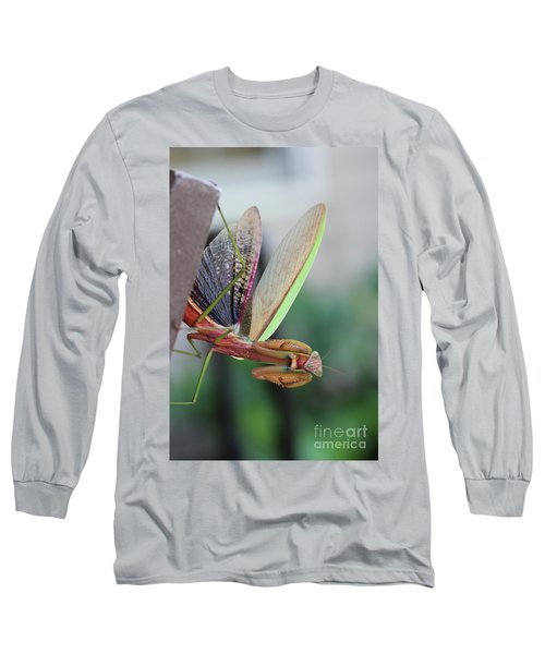 Long Sleeve T-Shirt featuring the photograph Praying Mantis by Stacey Zimmerman