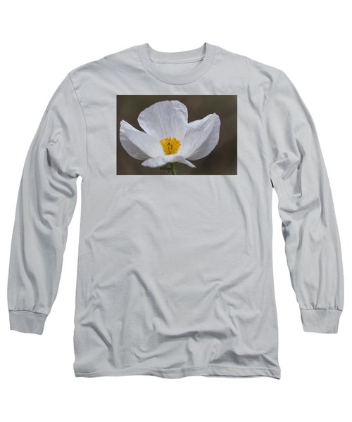 Long Sleeve T-Shirt featuring the photograph Prickly Poppy by Laura Pratt