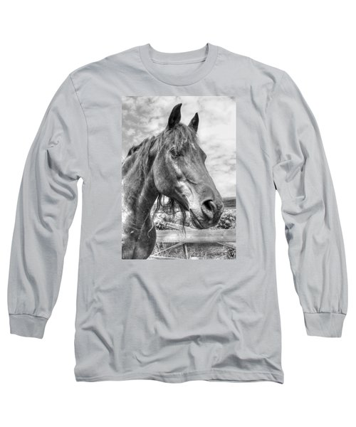 Quarter Horse Portrait Long Sleeve T-Shirt by Jim Sauchyn