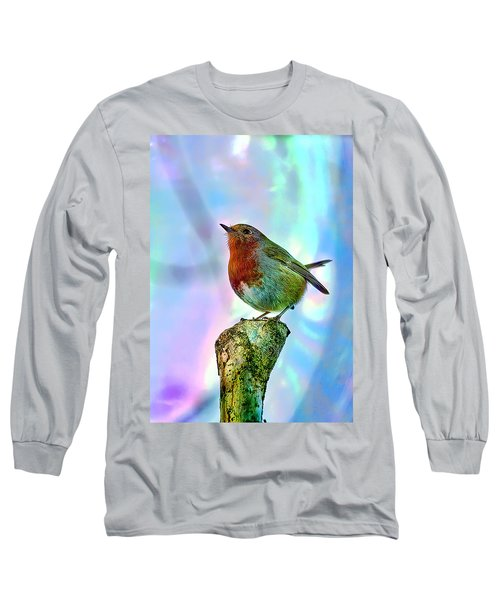 Rainbow Robin Long Sleeve T-Shirt