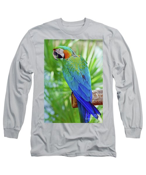 Rapsody In Blue Long Sleeve T-Shirt by Larry Nieland