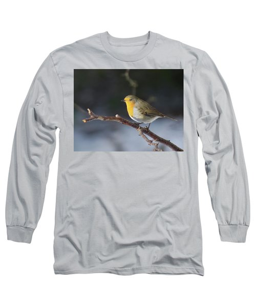 Red-breasted Robin Long Sleeve T-Shirt