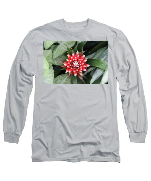Red Flower With White Tips Long Sleeve T-Shirt