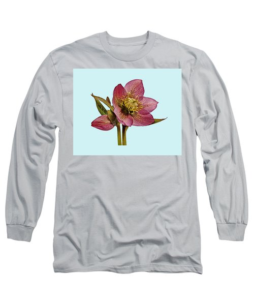 Red Hellebore Blue Background Long Sleeve T-Shirt by Paul Gulliver