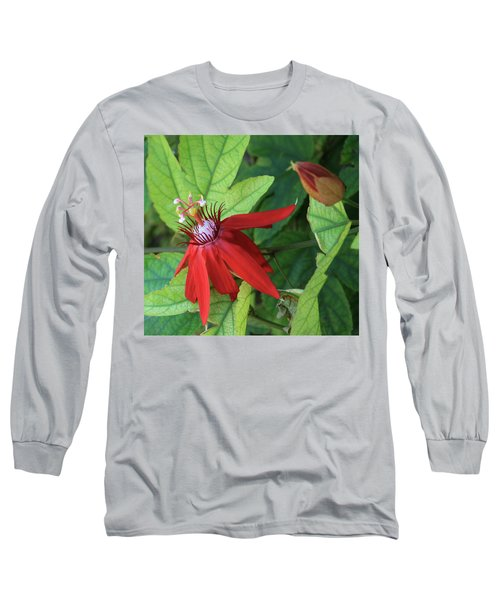 Red Passion Bloom Long Sleeve T-Shirt by Marna Edwards Flavell