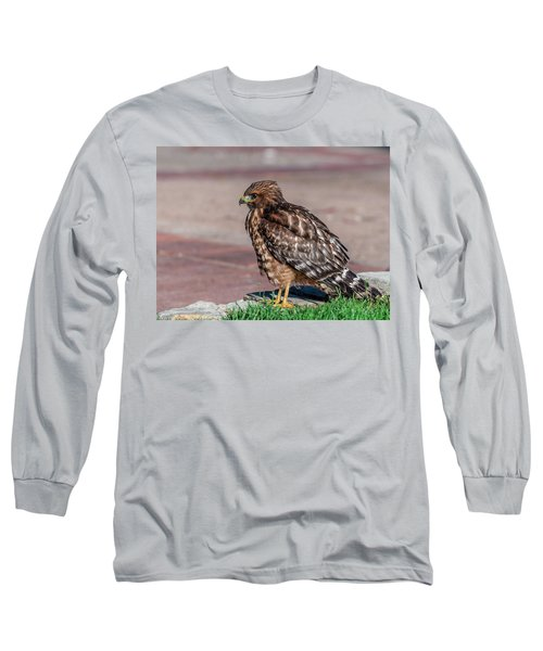 Red-shouldered Hawk Long Sleeve T-Shirt by Martina Thompson