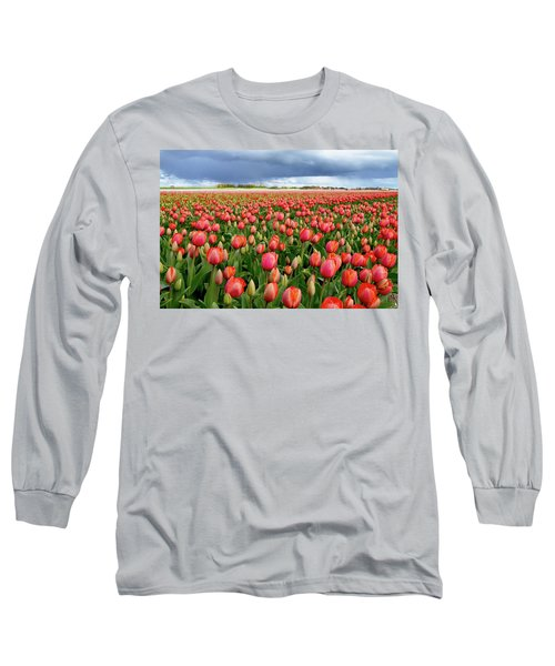 Red Tulip Field Long Sleeve T-Shirt