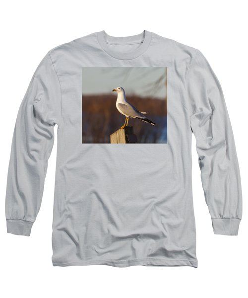 Ring Billed Gull Long Sleeve T-Shirt