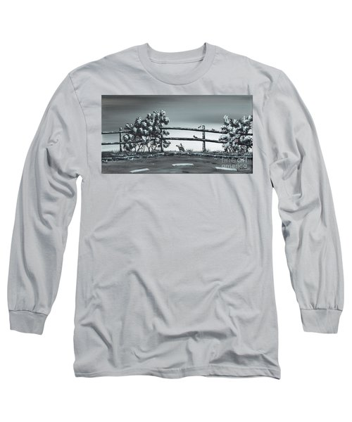 Road Runner. Long Sleeve T-Shirt by Kenneth Clarke
