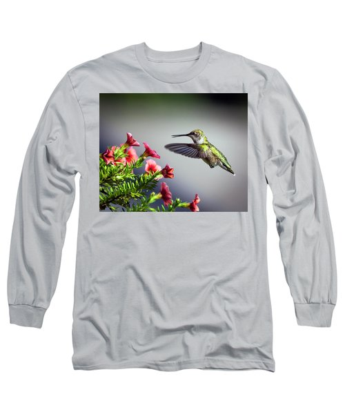 Ruby Throated Hummingbird #1 Long Sleeve T-Shirt
