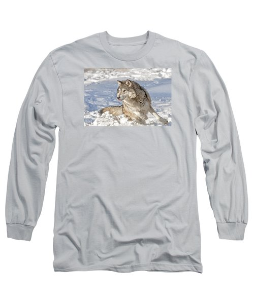 Running Wolf Long Sleeve T-Shirt