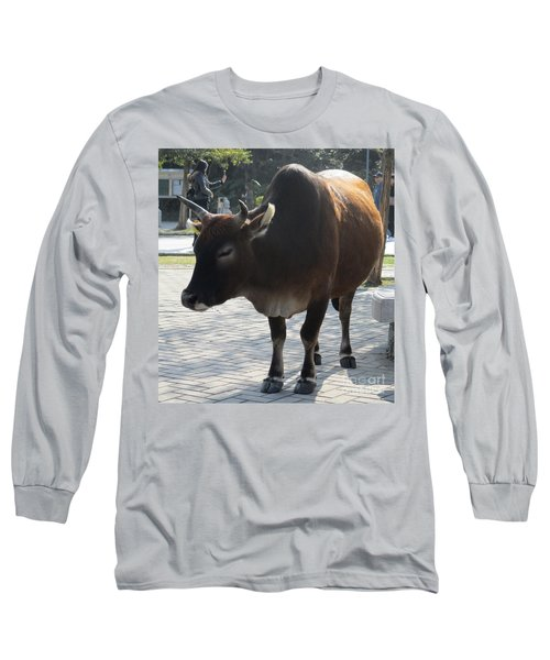 Long Sleeve T-Shirt featuring the photograph Sacred Cow 2 by Randall Weidner