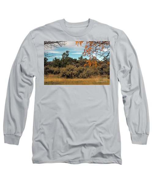 Sagebrush And Lava Long Sleeve T-Shirt by Cindy Murphy - NightVisions
