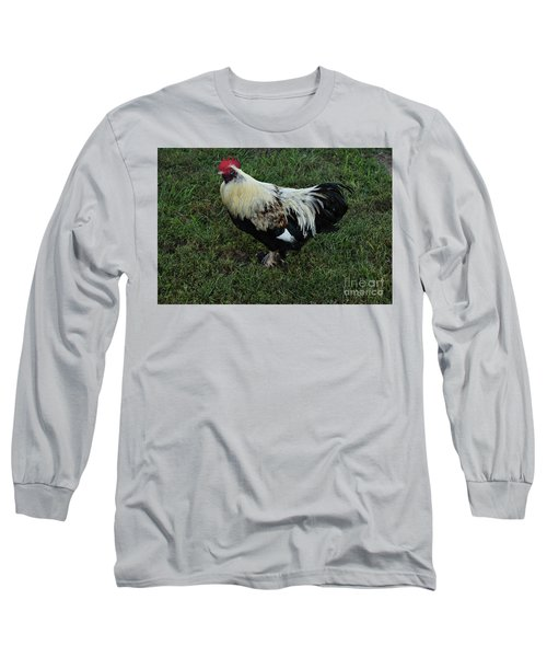 Salmon Faverolle Rooster Long Sleeve T-Shirt by Mark McReynolds