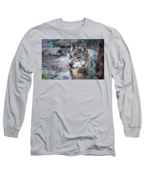 Sancho Searching The Area Long Sleeve T-Shirt by Elaine Malott