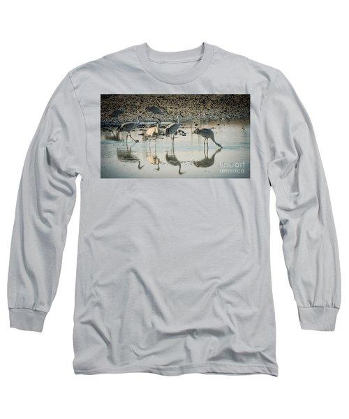 Sandhill Crane Reflections Long Sleeve T-Shirt