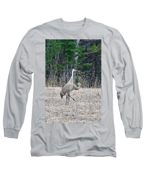 Long Sleeve T-Shirt featuring the photograph Sandhill Cranes 1166 by Michael Peychich