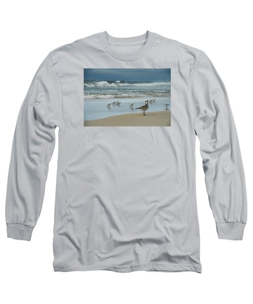 Sandpiper Beach Long Sleeve T-Shirt by Renee Hardison