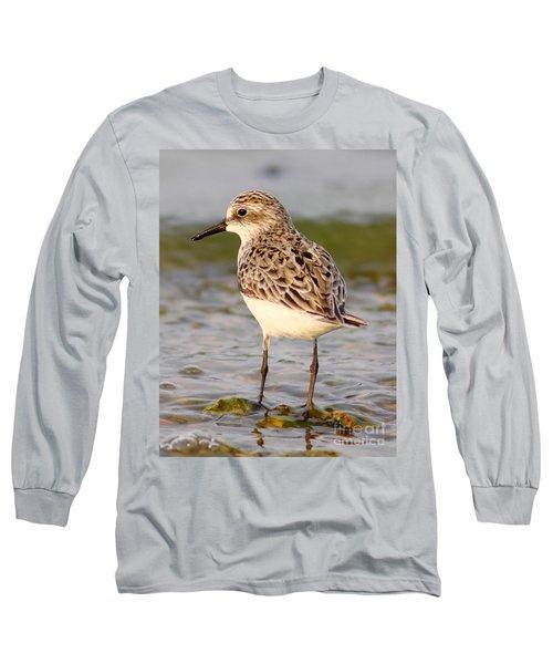 Sandpiper Portrait Long Sleeve T-Shirt
