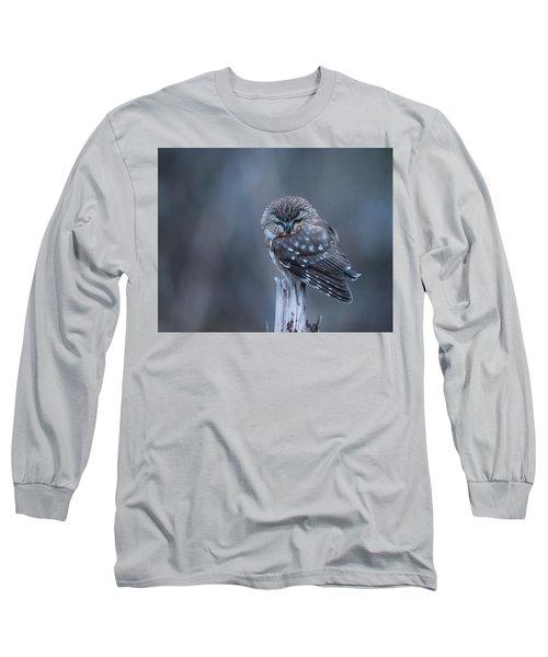 Saw-whet Owl Long Sleeve T-Shirt