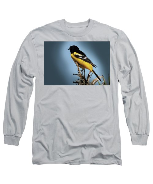 Scott's Oriole In Desert Long Sleeve T-Shirt