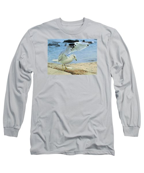 Seagull On The Beach Long Sleeve T-Shirt