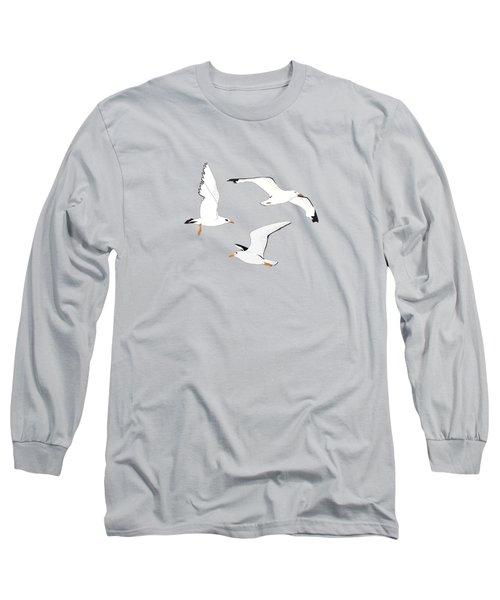 Seagulls Gathering At The Cricket Long Sleeve T-Shirt