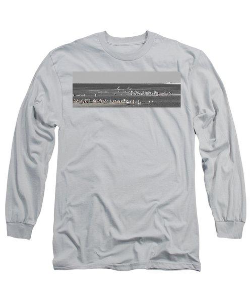 Seascape Gulf Coast, Ms F20b Long Sleeve T-Shirt