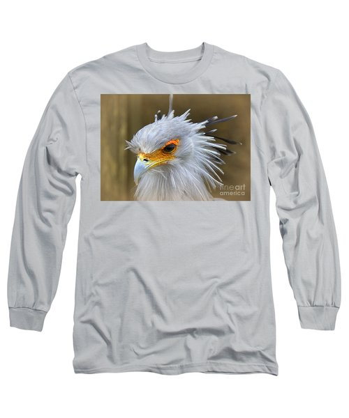 Long Sleeve T-Shirt featuring the photograph Secretary by Lisa L Silva