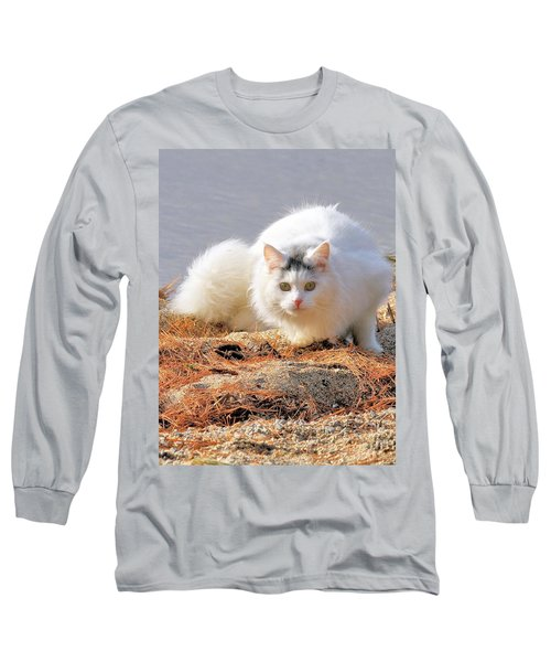 Shore Kitty Long Sleeve T-Shirt by Debbie Stahre