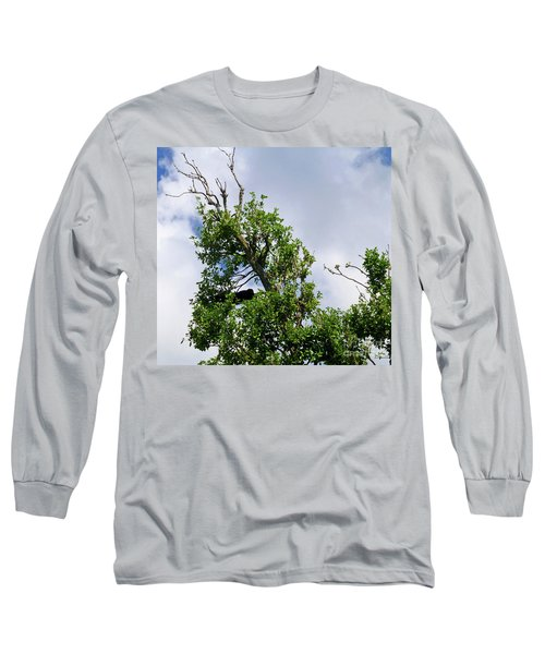Long Sleeve T-Shirt featuring the photograph Sleeping Monkey 2 by Francesca Mackenney