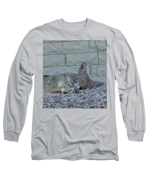 Sleepy Li'l Coyote Long Sleeve T-Shirt by Anne Rodkin