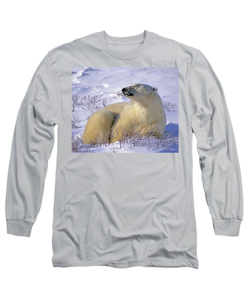 Sleepy Polar Bear Long Sleeve T-Shirt