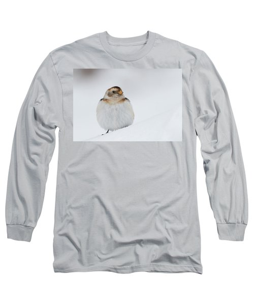 Long Sleeve T-Shirt featuring the photograph Snow Bunting - Scottish Highlands by Karen Van Der Zijden