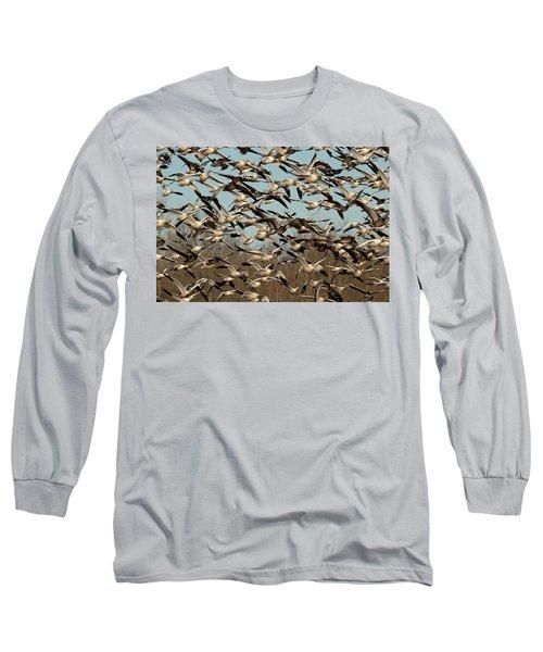 Snow Geese Long Sleeve T-Shirt