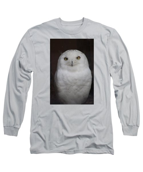 Snow Owl Long Sleeve T-Shirt by Debra     Vatalaro
