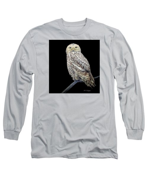 Snowy Owl On Black Long Sleeve T-Shirt by Constantine Gregory