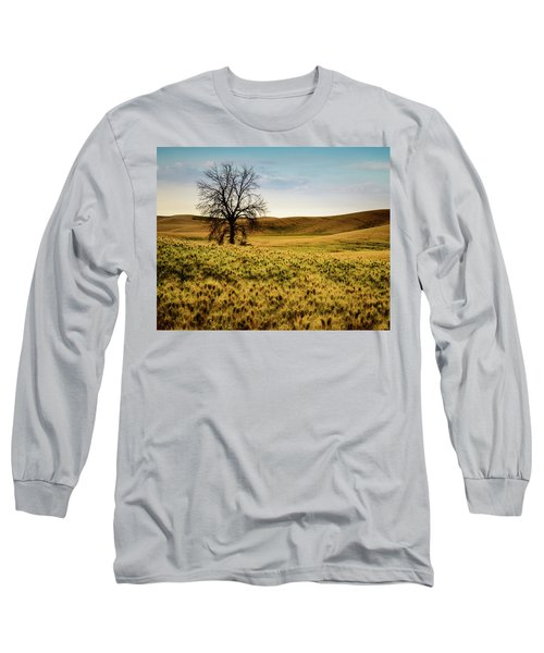 Long Sleeve T-Shirt featuring the photograph Solitary Tree by Chris McKenna