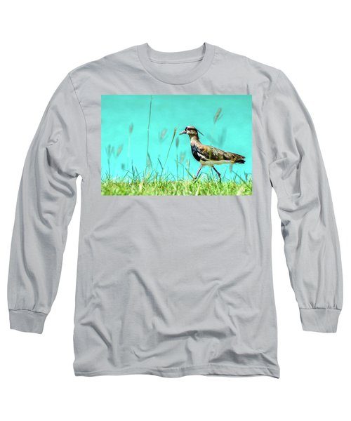 Southern Lapwing Long Sleeve T-Shirt by Randy Scherkenbach