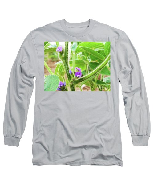 Soybean  Long Sleeve T-Shirt