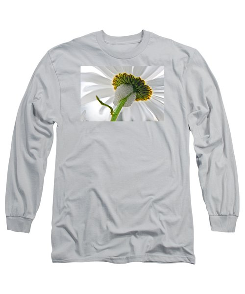 Spittle Bug Umbrella Long Sleeve T-Shirt