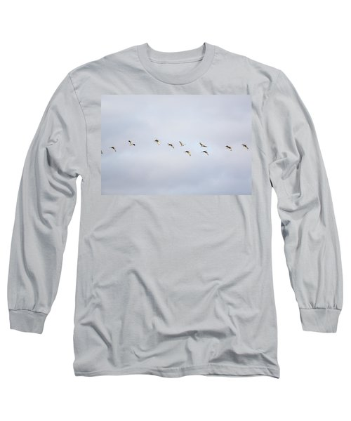 Spring Migration 2 Long Sleeve T-Shirt