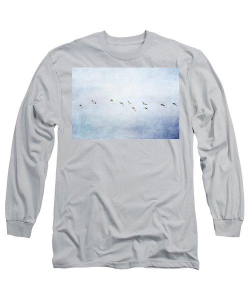 Spring Migration 2 - Textured Long Sleeve T-Shirt