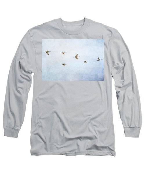 Spring Migration 4 - Textured Long Sleeve T-Shirt