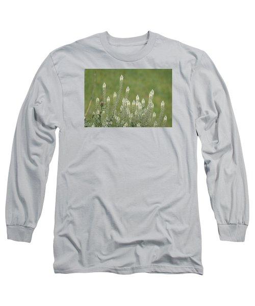 Spring Rockets Long Sleeve T-Shirt by Goyo Ambrosio