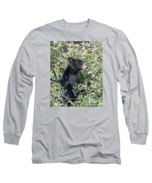 Startled Black Bear Cub Long Sleeve T-Shirt by Stephen  Johnson